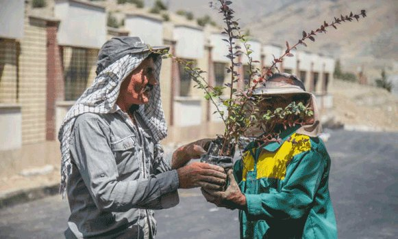 کارخانه نوآوری و صنایع خلاق البرز