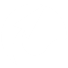 لوگوی بامن۲۴(سایناپردازش گسترش شرق )