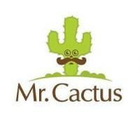 لوگوی مستر کاکتوس
