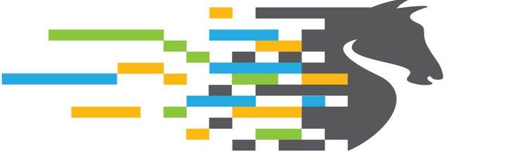 لوگوی رخش شهر( راهکار خدمات شهر رخش)