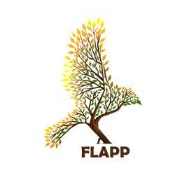 لوگوی فلپ
