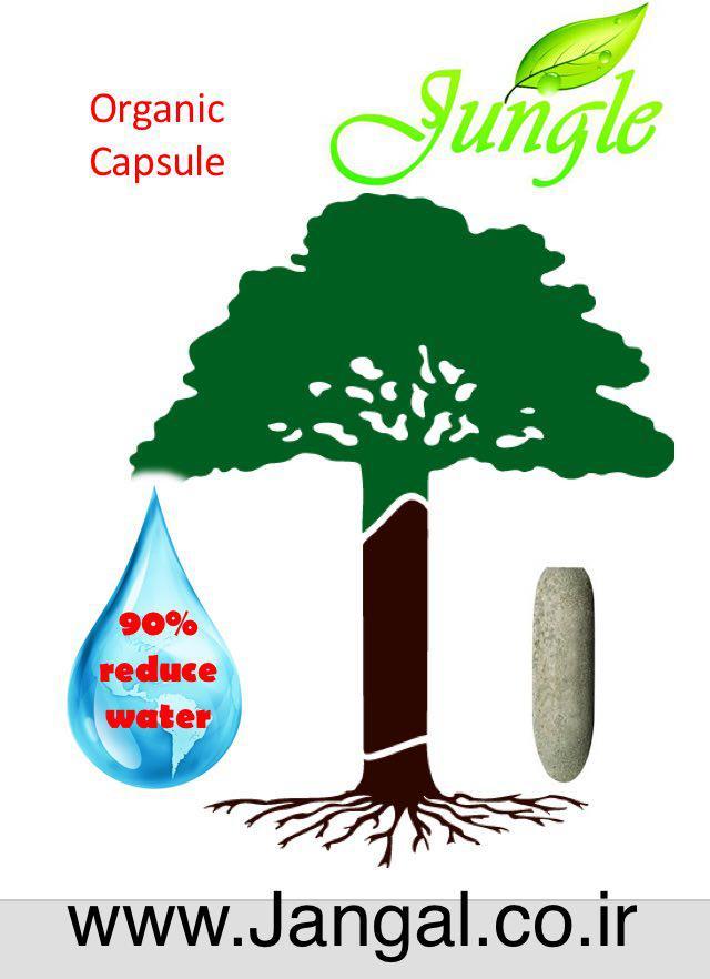 لوگوی کپسول ارگانیک جنگل