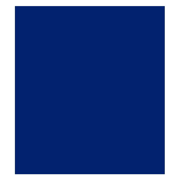 لوگوی پانداز