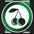 لوگوی کافه میوه