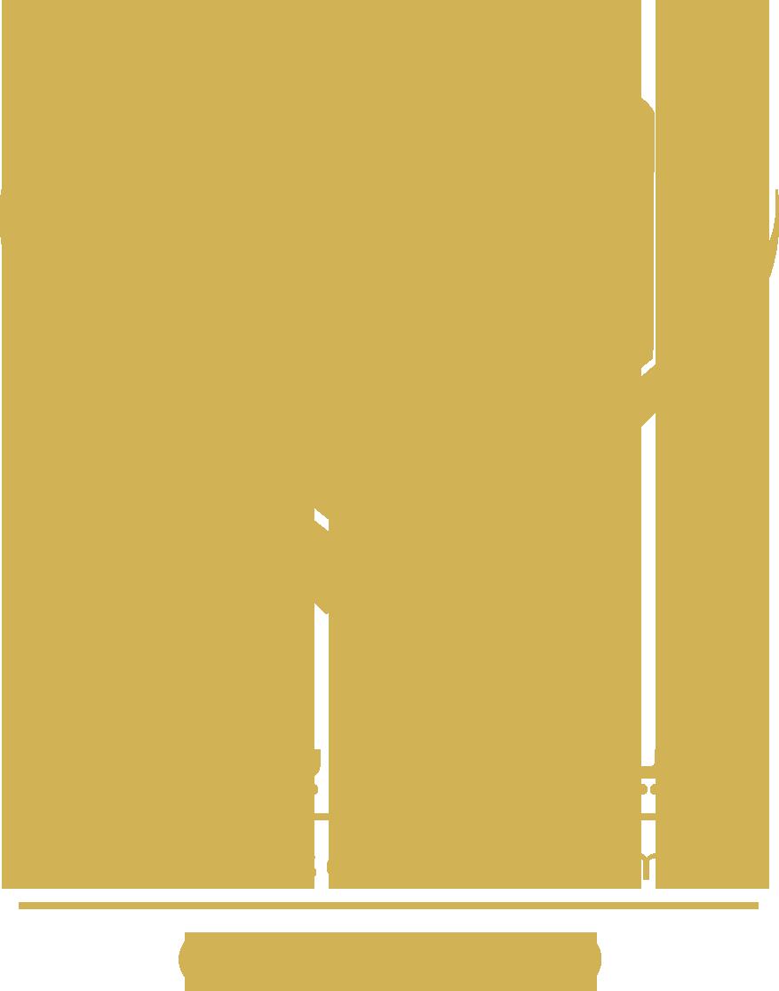 مدیریت سرمایه استلار
