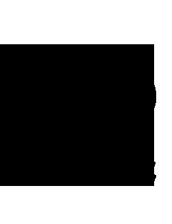 موسسه پژوهشی علوم و صنایع غذایی