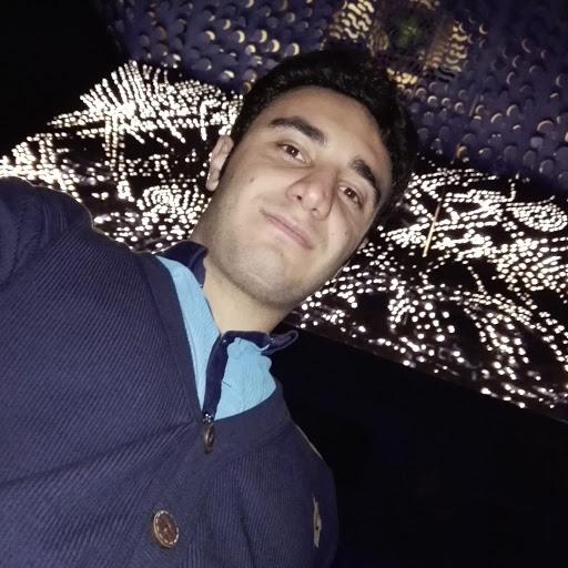 محسن گرزین