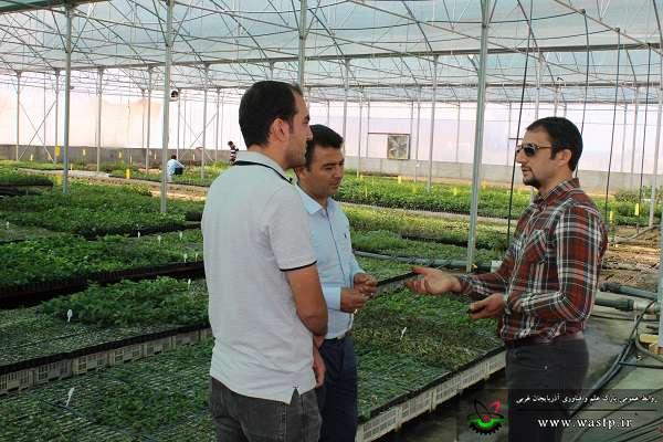 بازدید سرپرست پارک علم و فناوری آذربایجان غربی از شرکت دانش بنیان اروم زیست تاک