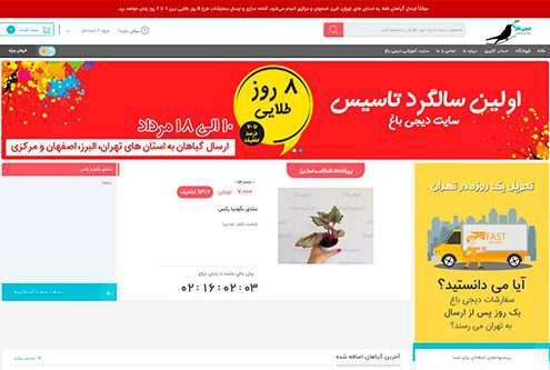 راه اندازی نخستین فروشگاه اینترنتی گل و گیاه کشور