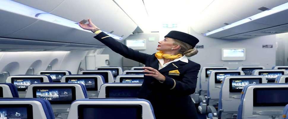چگونه میتوان مهماندار هواپیما شد/ مدرک تحصیلی و ویژگیهای شخصیتی مورد نیاز