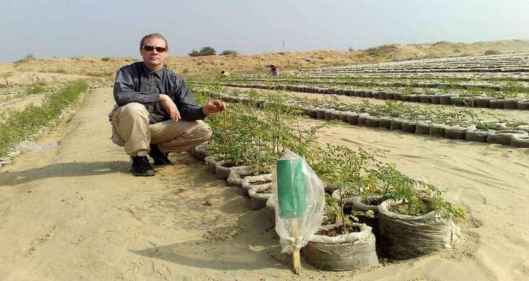 استارتاپی که خاک بیابان را به خاک حاصلخیز تبدیل میکند