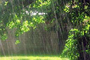 آب باران با فناوری ایرانی «آشامیدنی» شد