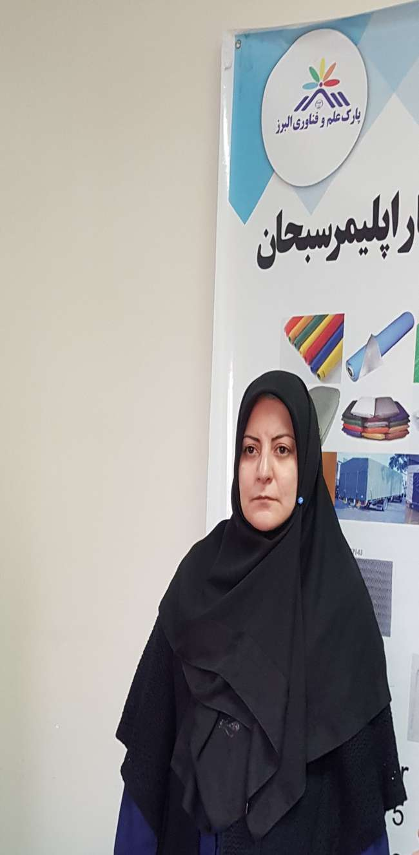 پارک علم و فناوری البرز می تواند بهترین ساختار برای سرریز فناوری تهران باشد