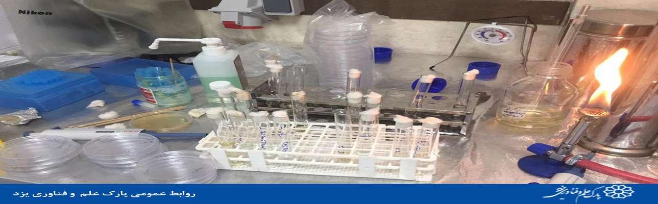 تولید کیت های تشخیص ویروس کرونا و تعیین اثربخشی ضدعفونی کننده های تولیدی