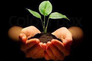 ۱۶۰ میلیارد تومان کاهش ارزبری با تولید کودهای زیستی محقق میشود