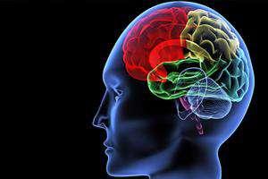 یک گام به ساخت ابزارهای نوین و ترکیبی تحریک غیرتهاجمی مغز نزدیکتر شدیم