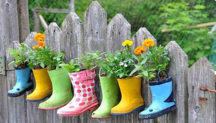 نکات پرورش گل و گیاه در خانه