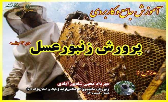 وبینار پرورش زنبور عسل
