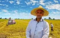 دست کشاورز، دست مصرفکننده