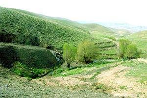 طرحی فناورانه برای سرسبزی اراضی کشور؛ «خشکهرود» به یاری کشاورزان میرود