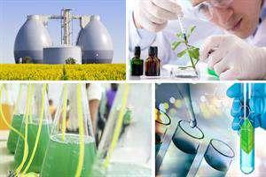 زیستفناوری صنعتی برگ برنده صنایع کشور است