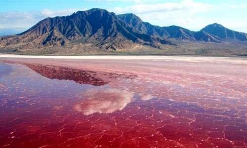 دریاچه مهارلو آیینه صورتی ایران