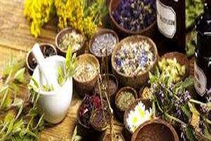 رویداد استارتاپی داروها و فرآورده های گیاهی و طبیعی برگزار می شود.