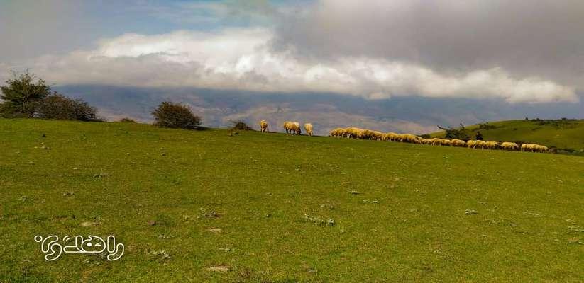 چشم اندازهای دیدنی از روستای زیبای گلدیان تا قله آسمانسرا