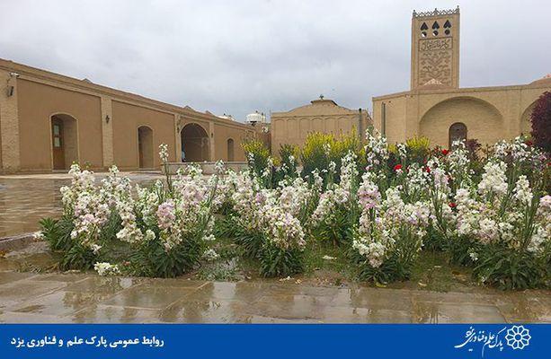 گزارش تصویری اقبال بارانی