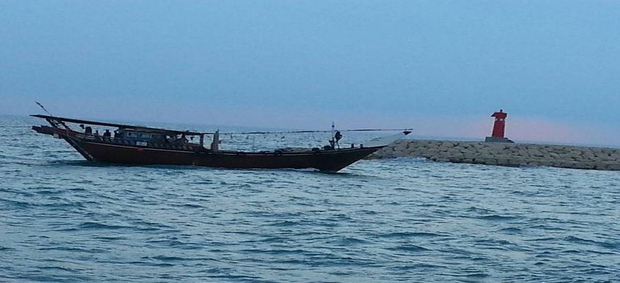 صید ماهیان استخوانی در گلستان ۱۸% افزایش یافت
