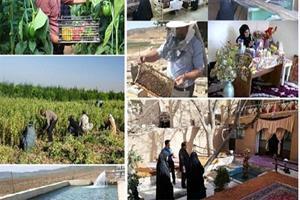 طرحهای جریانساز حوزه گیاهان دارویی در مناطق روستایی اجرا شد