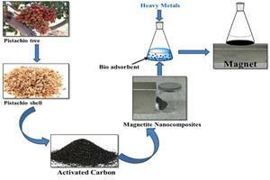 پوست پسته با حذف فلزات سنگین به محیط زیست جانی تازه می دهد