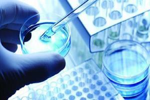 رونق اشتغالزایی حوزه سلولهای بنیادی با فعالیت شتابدهندهها