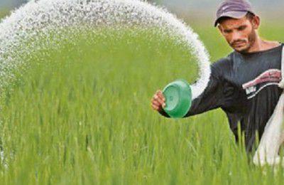 پتروشیمی ها کود به نرخ دولتی  به کشاورزان نمی دهند