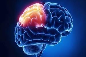 تاثیرات درد بر روی حافظه شناخته می شود