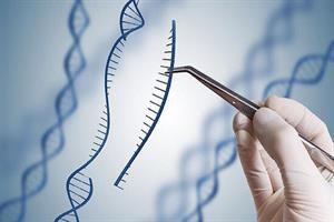 ژن درمانی به کمک نیروی خلاق توسعه مییابد