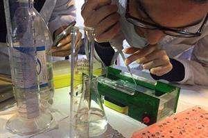 فعالیت محققان ایرانی تولید علم در حوزه سلول های بنیادی را شتاب داد