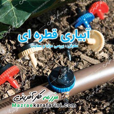 اجرای سیستم آبیاری قطره ای - مزایا و معایب
