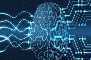 دومین دوره بین المللی آموزش جامع علوم اعصاب شناختی برگزار می شود