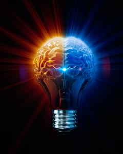 خلاقیت کارآفرینانه یا کارآفرینی خلاقانه؟