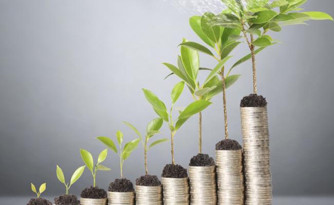 با تمرکز بر این چهار حوزه به رشد سریع دست پیدا کنید